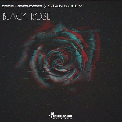 Black Rose by Damian Sarandeses