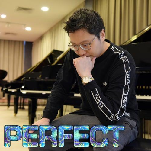 Perfect (Piano Version) von Ray Mak