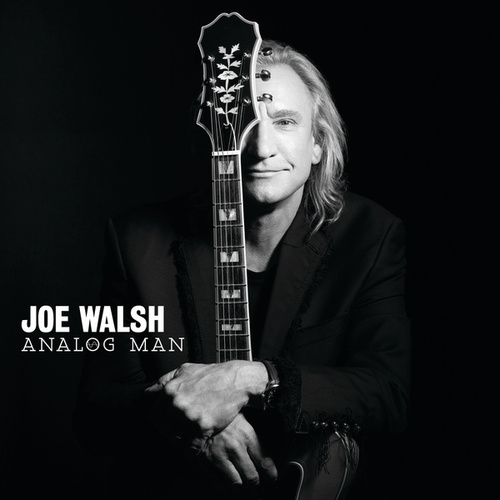 Analog Man by Joe Walsh