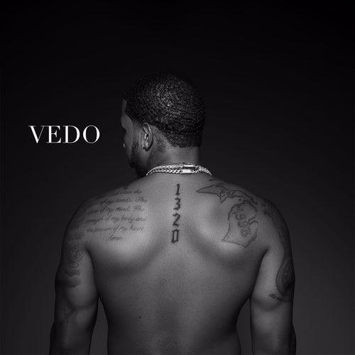 1320 by Vedo