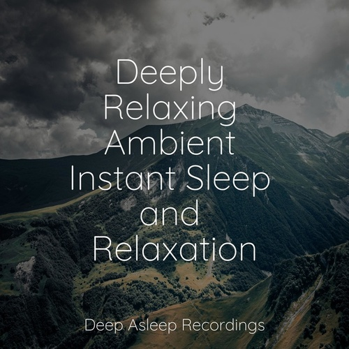 Deeply Relaxing Ambient Instant Sleep and Relaxation von Deep Sleep (2)