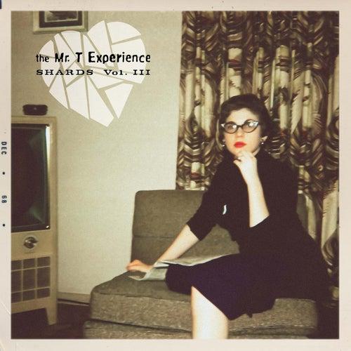 Mtx Shards, Vol. 3 von Mr. T Experience