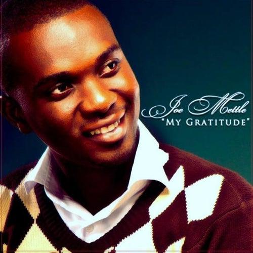 My Gratitude by Joe Mettle