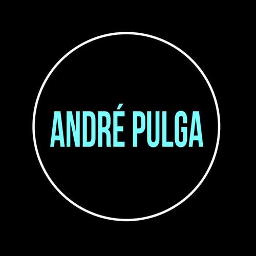 Hurt (Cover) von André Pulga