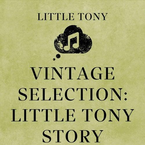 Vintage Selection: Little Tony Story (2021 Remastered) de Little Tony