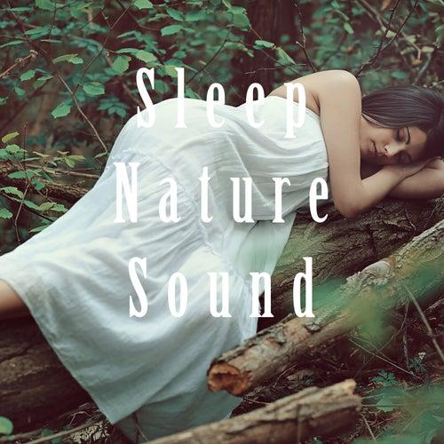 Sleep Nature Sound fra Nature Sounds (1)