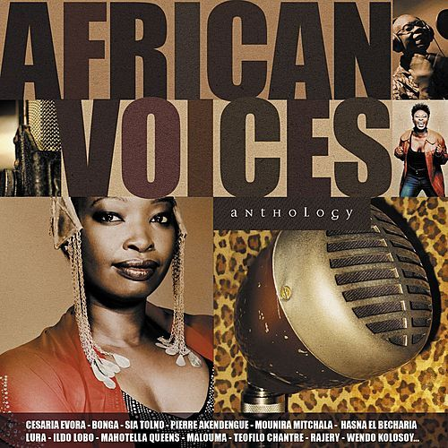African Voices Anthology von Various Artists