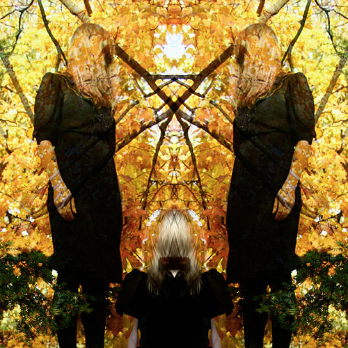 Feel It Break (Deluxe Version) di Austra