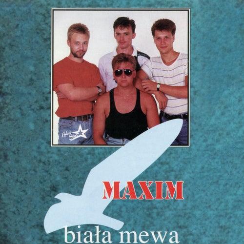 Biała mewa von Maxim