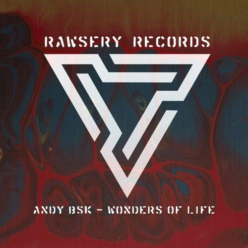 Wonders Of Life by Andy Bsk