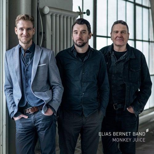 Monkey Juice by Elias Bernet Band