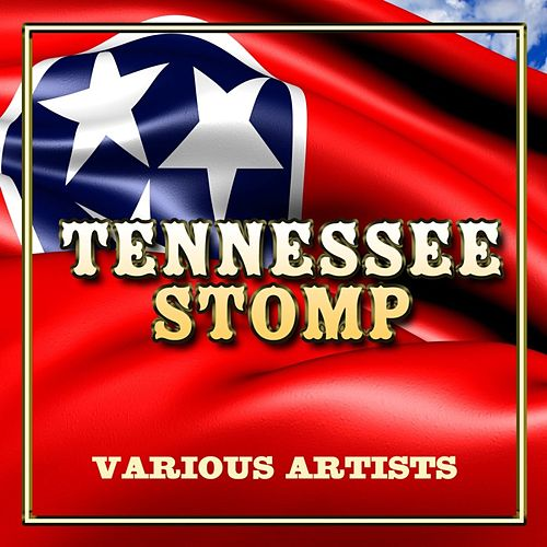 Tennessee Stomp by Various Artists