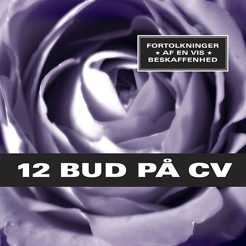 12 Bud På CV by Various Artists