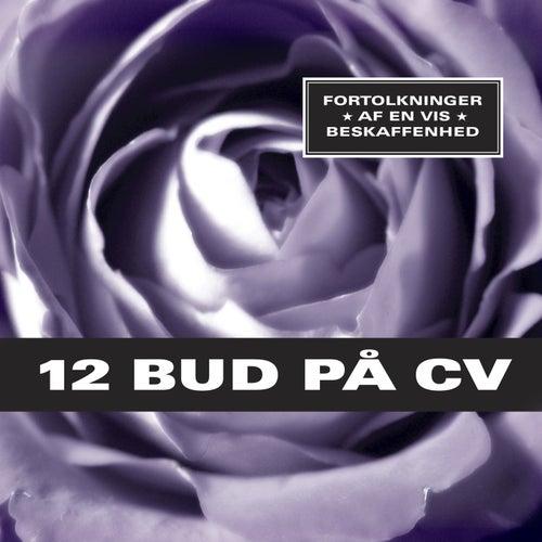 12 Bud På CV van Various Artists