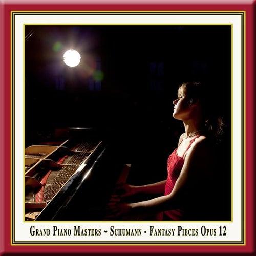 Grand Piano Masters: Schumann: Fantasy Pieces Opus 12 von Magdalena Mullerperth