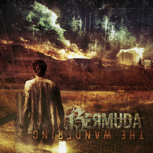 The Wandering by Bermuda