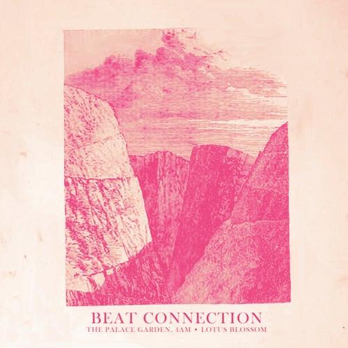 The Palace Garden 4am de Beat Connection