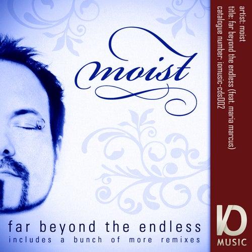 Far Beyond The Endless - Digital Remixes by Moist