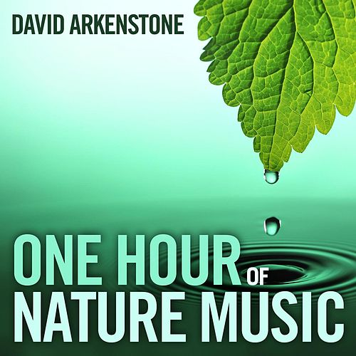 One Hour of Nature Music: For Massage, Yoga and Relaxation von David Arkenstone