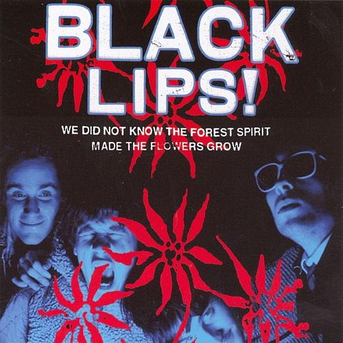 We Did Not Know the Forest Spirit Made the Flowers Grow by Black Lips