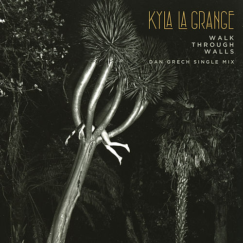 Walk Through Walls by Kyla La Grange & Kygo