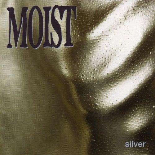 Silver by Moist