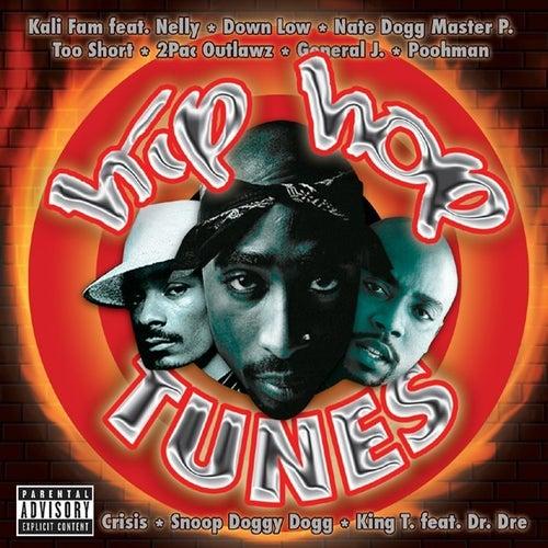 Hip Hop Tunes von Various Artists