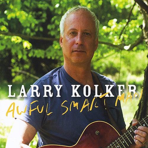 Awful Smart Man de Larry Kolker
