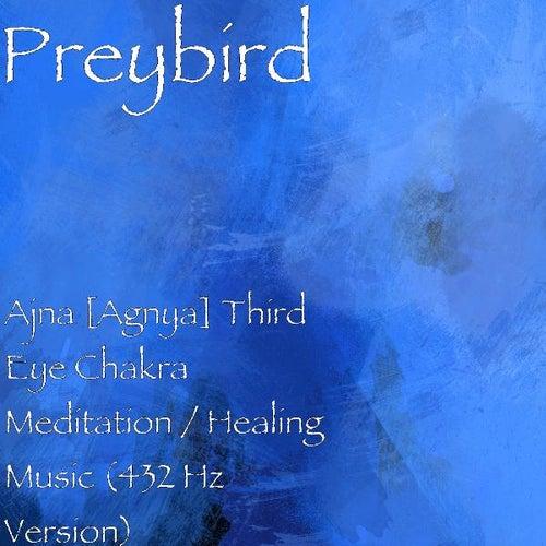 Ajna [Agnya] Third Eye Chakra Meditation / Healing    by Preybird