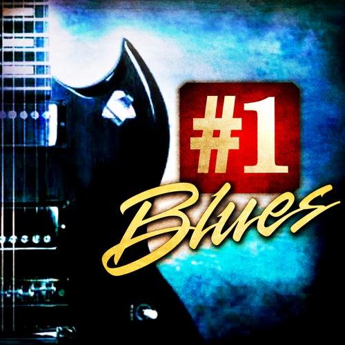#1 Blues de Various Artists