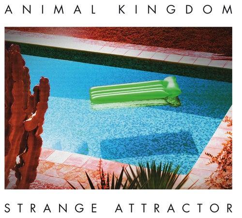 Strange Attractor von Animal Kingdom