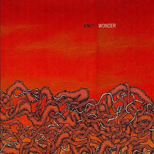 Wonder von Knut