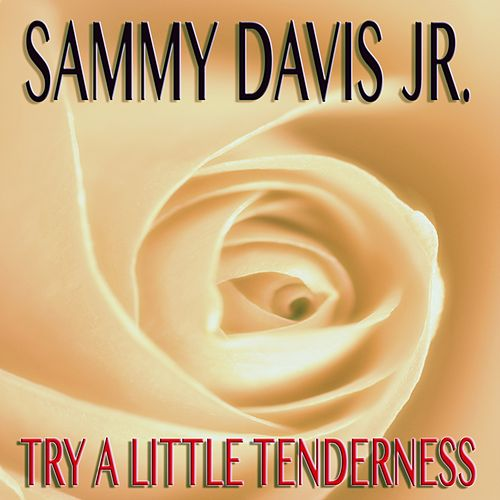 Try A Little Tenderness de Sammy Davis, Jr.