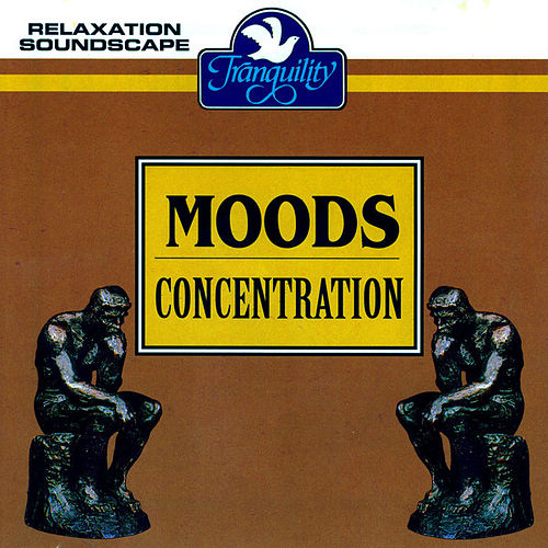 Moods - Concentration by Anton Hughes