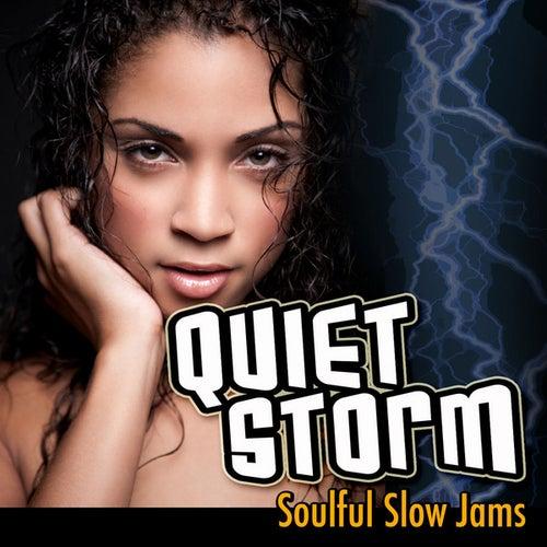 Quiet Storm: Soulful Slow Jams de Various Artists