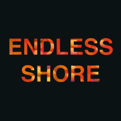 Endless Shore de Melody's Echo Chamber