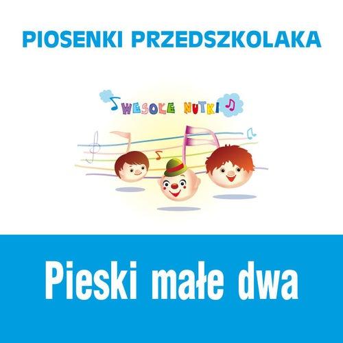 Piosenki przedszkolaka / Pieski male dwa de Wesole Nutki