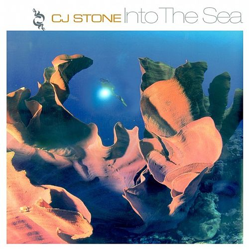 Into the Sea von CJ Stone
