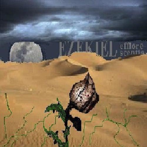 Efflorescentia by Ezekiel