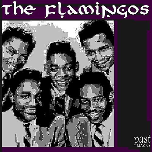 The Very Best of the Flamingos de The Flamingos
