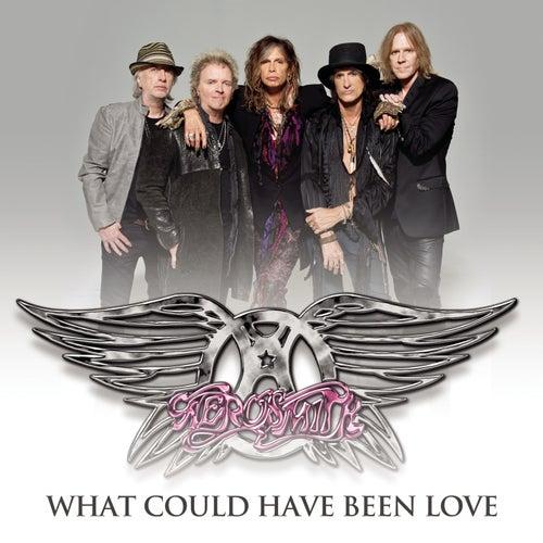 What Could Have Been Love von Aerosmith