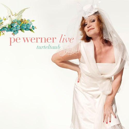Turteltaub - live von Pe Werner