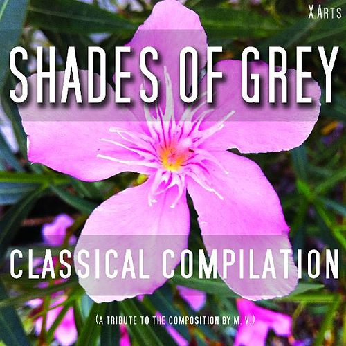 Shades of Grey - Klassik Vol. 1 de Various Artists