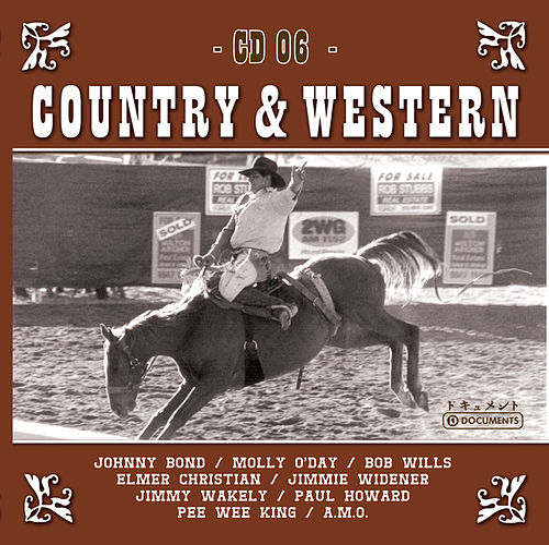 Country Hits Vol. 6 de Various Artists