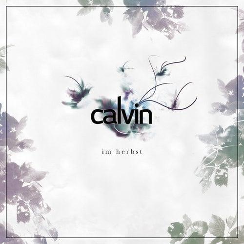 Im Herbst von Calvin