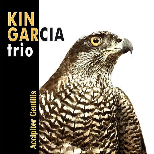 Accipiter Gentilis de Kin Garcia Trio