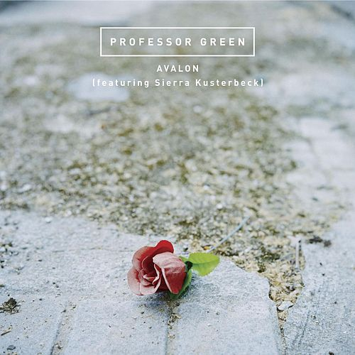 Avalon von Professor Green