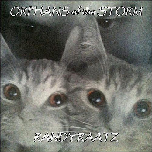 Orphans of the Storm von Randy Raatz