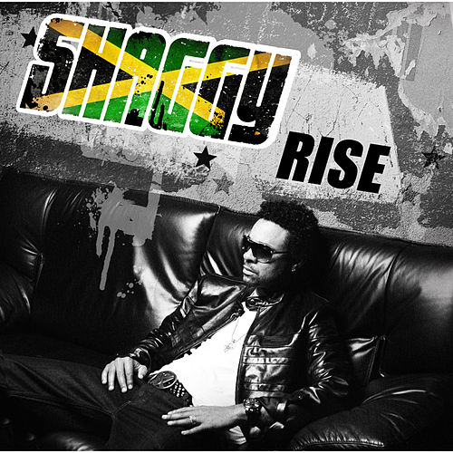 Rise by Shaggy