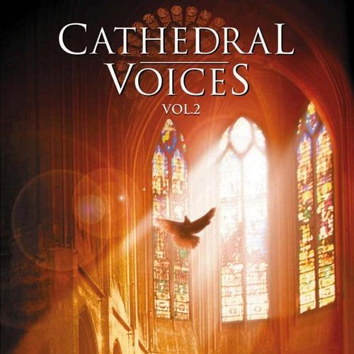 Cathedral Voices - Vol. 2 von Various Artists